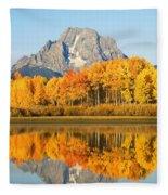 Usa, Grand Teton National Park Wyoming Fleece Blanket