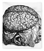 Vesalius: Brain, 1543 Fleece Blanket