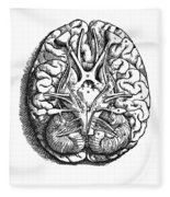 Vesalius: Brain Fleece Blanket