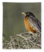 Watchful Eye Fleece Blanket