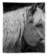 Western Horse In Alberta Canada Fleece Blanket