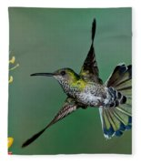 White-necked Jacobin Fleece Blanket