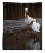 White Pelicans Fleece Blanket