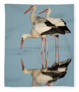 White Storks Ciconia Ciconia In A Lake Fleece Blanket
