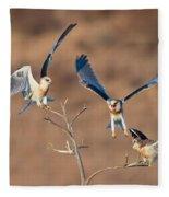 White-tailed Kite Siblings Fleece Blanket