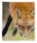 Wild Eyes Fleece Blanket