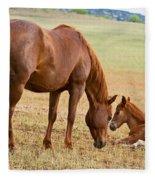 Wild Horse Mother And Foal Fleece Blanket