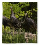 Wild Turkey Meleagris Gallopavo Fleece Blanket