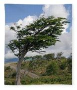 Wind-bent Tree In Tierra Del Fuego Fleece Blanket