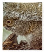Winter Squirrel Fleece Blanket