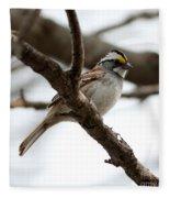 Yellow Crowned Sparrow Fleece Blanket