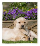 Yellow Labrador Puppies Fleece Blanket