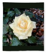 Yellow Rose At Dawn Fleece Blanket