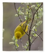 Yellow Warbler -1 Fleece Blanket