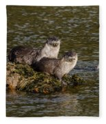 Yellowstone Otters Fleece Blanket
