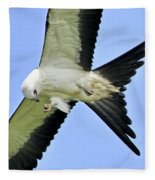 Young Swallow-tailed Kite Fleece Blanket