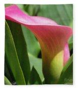 Zantedeschia Named Majestic Red Fleece Blanket