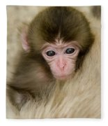 Baby Snow Monkey, Japan Fleece Blanket