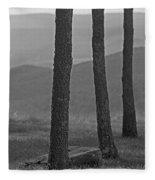 Blue Ridge Mountains - Virginia Bw 8 Fleece Blanket