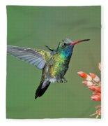 Broad-billed Hummingbird Fleece Blanket
