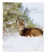 Mule Deer In Snow Fleece Blanket