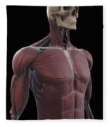 Muscles Of The Upper Body Fleece Blanket