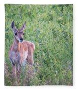 Pronghorn Antelope Portrait Fleece Blanket