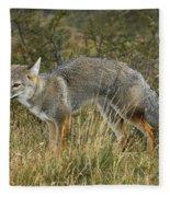 Patagonia Grey Fox Fleece Blanket