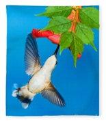 Ruby Throated Hummingbird Female Fleece Blanket