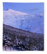 Sierra Nevada Fleece Blanket