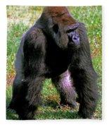 Western Lowland Gorilla Fleece Blanket