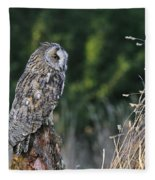 100205p264 Fleece Blanket