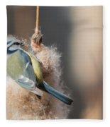 Blue Tit Fleece Blanket