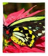 Cairns Birdwing Butterfly Fleece Blanket