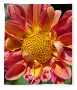 Dahlia From The Showpiece Mix Fleece Blanket