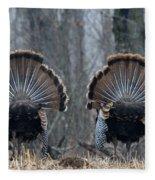 Jake Eastern Wild Turkeys Fleece Blanket