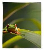 Red Eyed Tree Frog Fleece Blanket