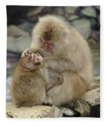 Snow Monkeys Fleece Blanket