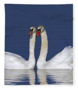110307p052 Fleece Blanket