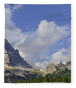 110414p091 Fleece Blanket