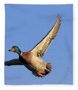 110506p031 Fleece Blanket