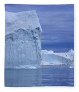 110506p054 Fleece Blanket