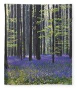 110506p237 Fleece Blanket
