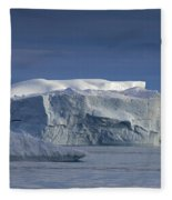 110613p174 Fleece Blanket