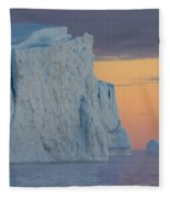 110613p175 Fleece Blanket