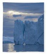 110613p179 Fleece Blanket