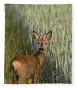 110714p133 Fleece Blanket