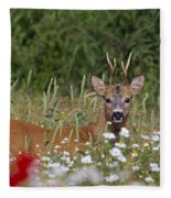 110714p324 Fleece Blanket