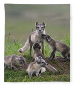 111130p059 Fleece Blanket