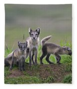 111130p062 Fleece Blanket